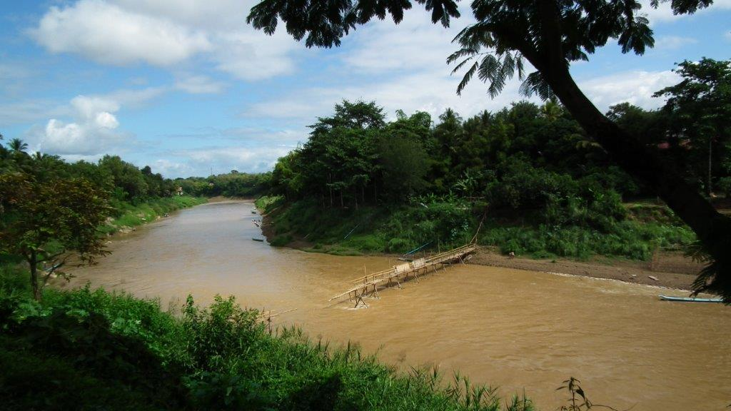 Pont en Bambous