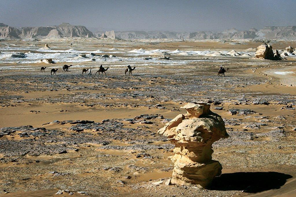 Le désert Libyque